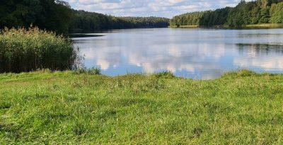 Plaża jezioro Zduńskie