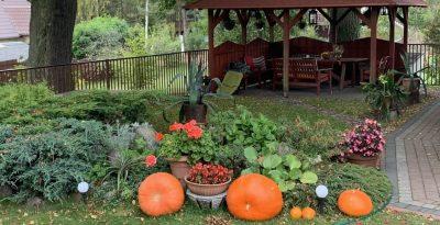 Agroturystyczna u Marleny -Skórzenno