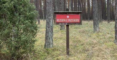 Rezerwat przyrody Zdrójno