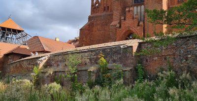 Średniowieczne mury obronne