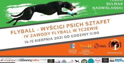 Flyball - Wyścigi psich sztafet - Tczew 2021